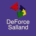 DeForce Salland